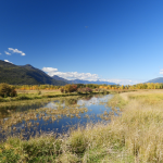 The public is asked to refrain from entering Creston Valley Wildlife Management Area